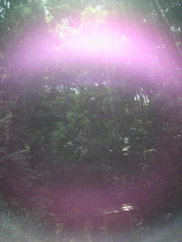 大神神社 2011年5月19日